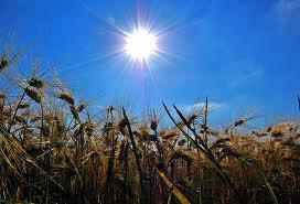 sole estivo