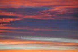 alba rosata