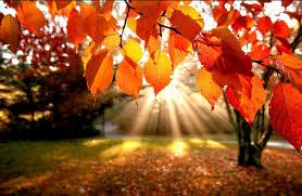 ottobre-acrostico