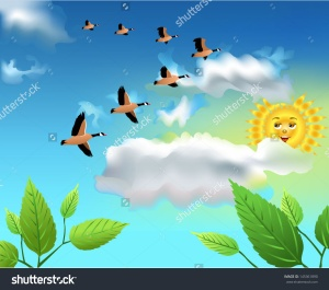 stock-vector-migrating-birds-flying-on-the-sky-145361890